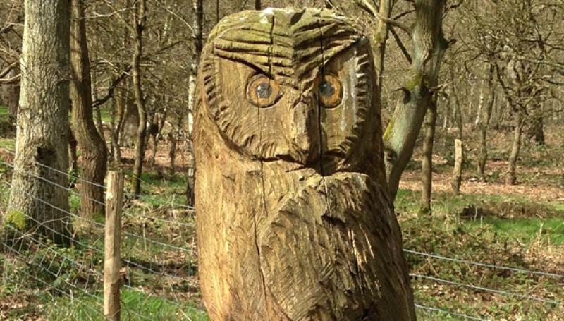Kunst i skoven