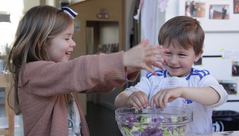 temadag: BØrn laver mad - i jeres institution